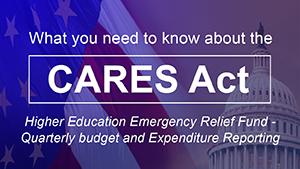 CARES ACT - Quarterly Icon